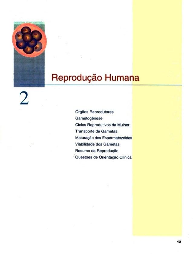 Reprodugéo Humana  Orgaos Reprodutores Gametogénese Ciclos Reprodutivos da Mulher Transporte de Gametas Maturagao dos Espe...