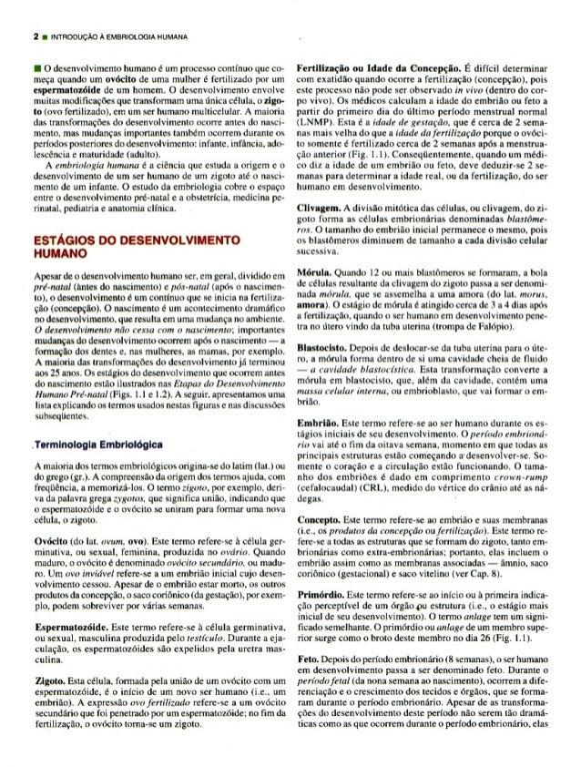 PERSAUD MOORE EMBRIOLOGIA BAIXAR CLINICA