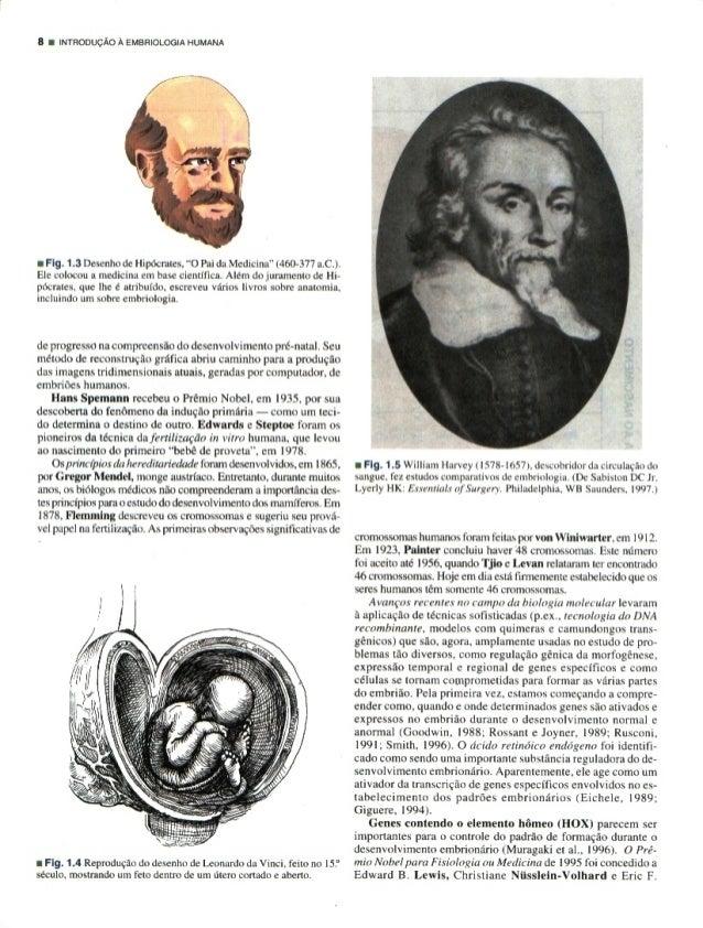 """B I mrnonuclo A EMBRIOLOGIA HUMANA     I Fig.  1.3 Desenho dc Hipocrates.  """"O Pai da Medicina"""" Ij-160-377 a. C.).  El:  co..."""