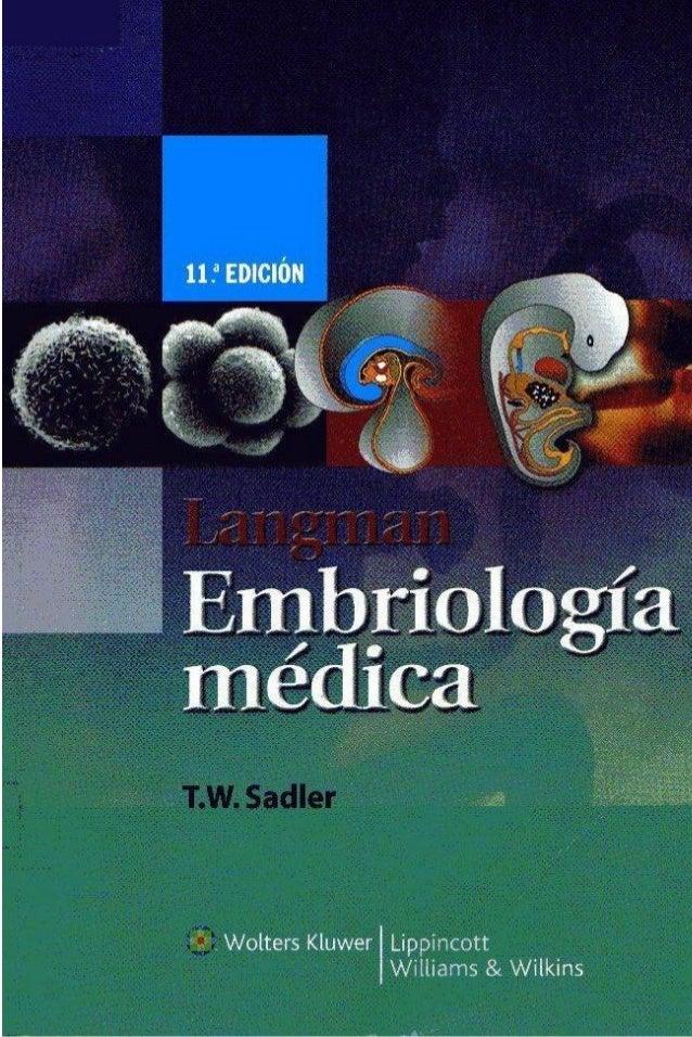 Embriologia Medica Langman Pdf