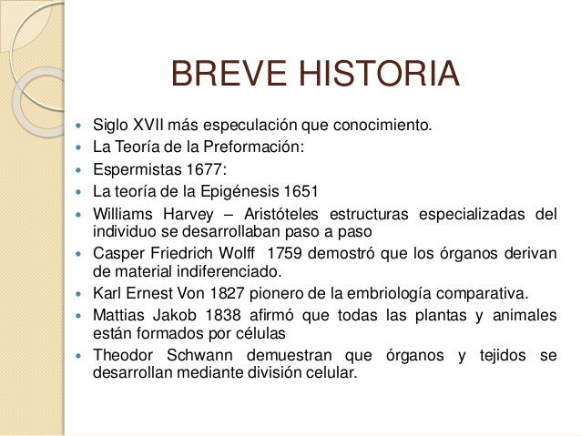 Embriologia maestria 2 Slide 3