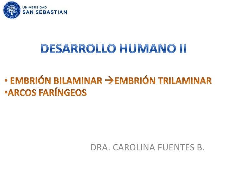 DESARROLLO HUMANO II<br /><ul><li> EMBRIÓN BILAMINAR EMBRIÓN TRILAMINAR