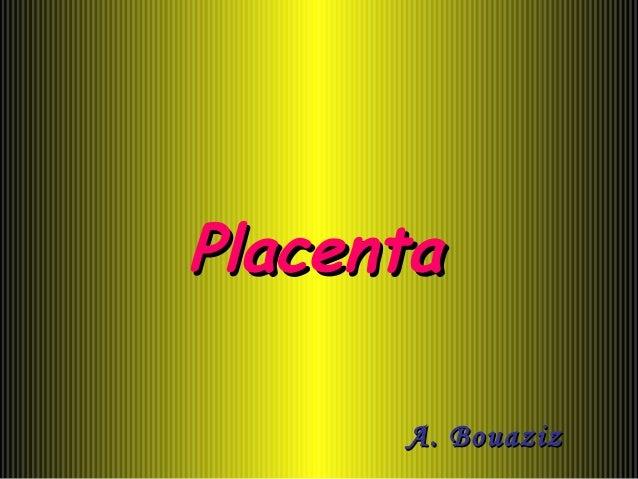 PlacentaPlacenta A. BouazizA. Bouaziz