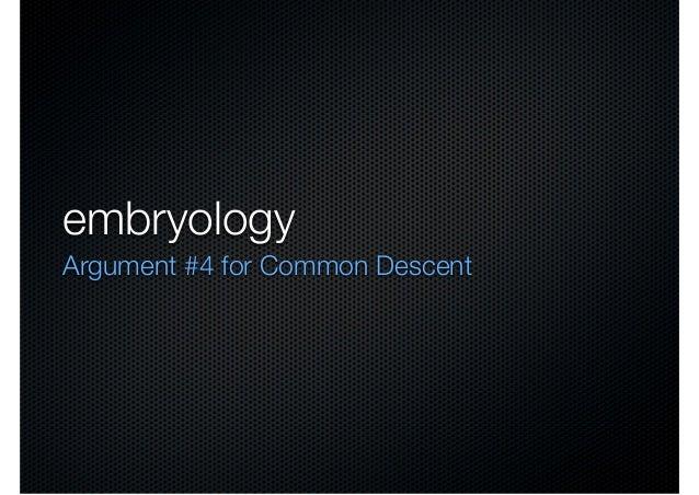 embryologyArgument #4 for Common Descent