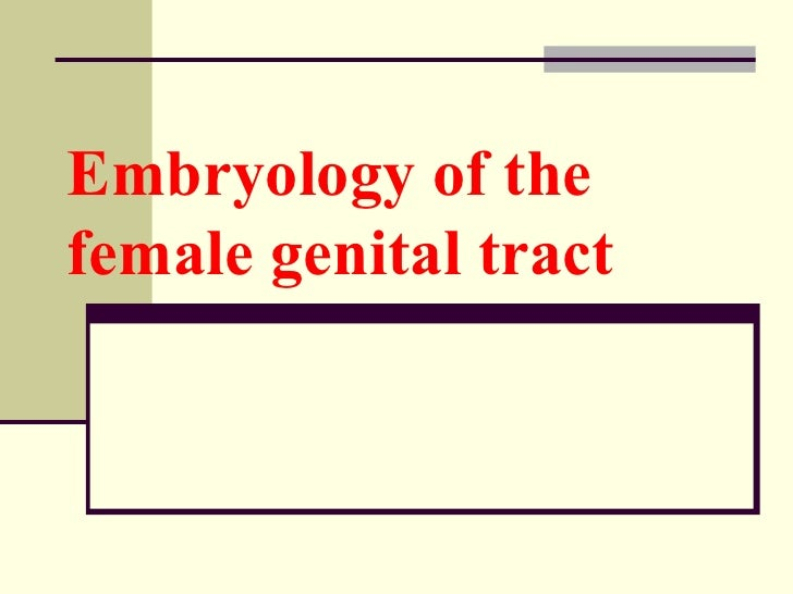 Embryology of the   female genital tract