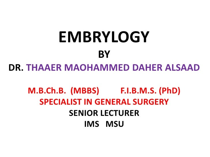 EMBRYLOGYBY DR. THAAER MAOHAMMED DAHER ALSAADM.B.Ch.B.  (MBBS)          F.I.B.M.S. (PhD)SPECIALIST IN GENERAL SURGERYSENIO...