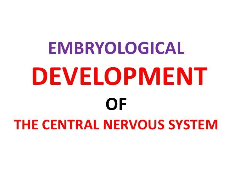 EMBRYOLOGICAL DEVELOPMENT OF THE CENTRAL NERVOUS SYSTEM<br />