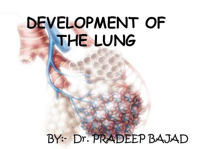 DEVELOPMENT OF THE LUNG BY:- Dr. PRADEEP BAJAD