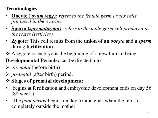 Human Fertilisation and Embryology Act 2008