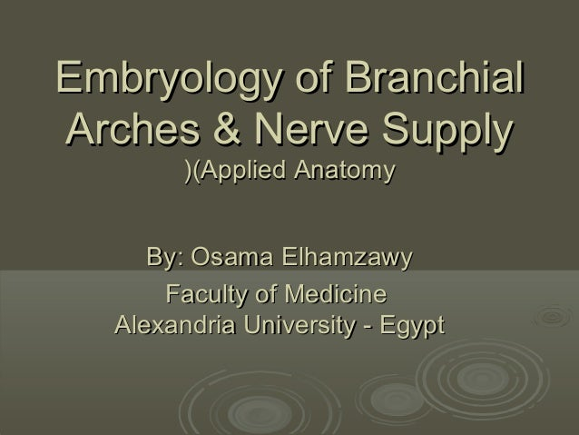 Embryology of Branchial Arches & Nerve Supply ((Applied Anatomy  By: Osama Elhamzawy Faculty of Medicine Alexandria Univer...