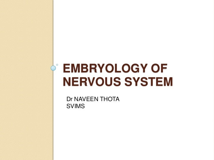 EMBRYOLOGY OFNERVOUS SYSTEMDr NAVEEN THOTASVIMS