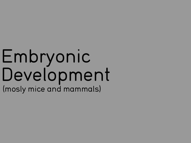 EmbryonicDevelopment(mosly mice and mammals)