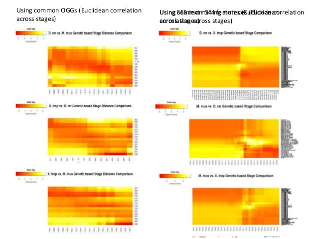Using common OGGs (Euclidean correlation across stages) Using SES text mining matrices (Euclidean correlation across stage...