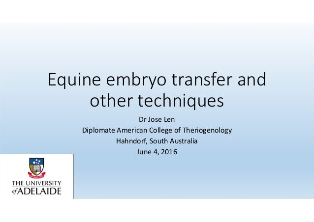 Equine Embryo Transfer And Other Techniques Dr Jose Len