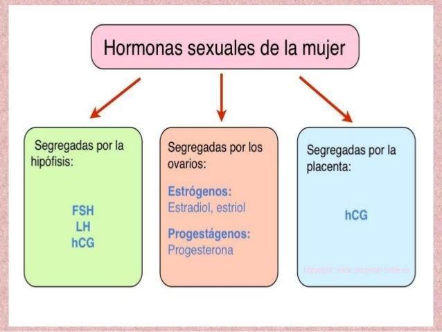 testosterona hormona anabolica