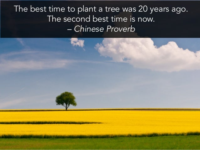 The best time to plant a tree was 20 years ago. The second best time is now. – Chinese Proverb