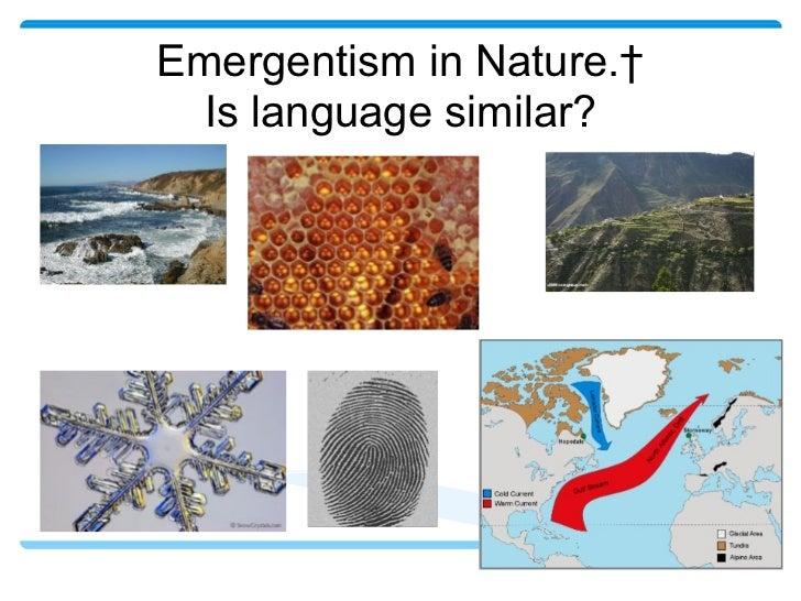 Emergentism in Nature. Is language similar?