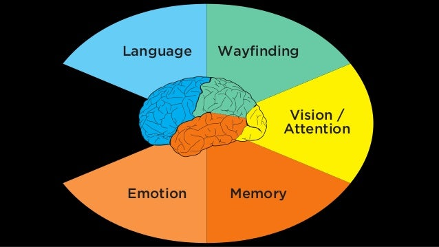 Language Wayfinding Vision / Attention MemoryEmotion Decision Making