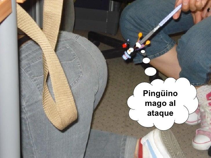 Pingüino mago al ataque