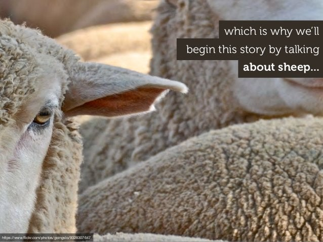 begin this story by talking https://www.flickr.com/photos/goingslo/9328307647 which is why we'll about sheep...