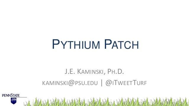 PYTHIUM PATCH J.E. KAMINSKI, PH.D. KAMINSKI@PSU.EDU   @ITWEETTURF