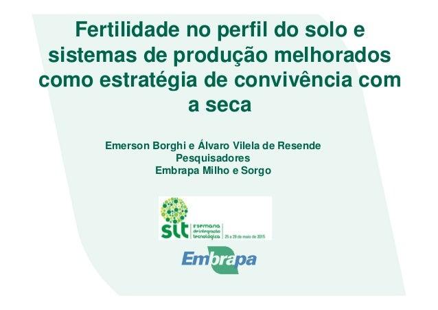 Fertilidade no perfil do solo e sistemas de produção melhorados como estratégia de convivência com a seca Emerson Borghi e...