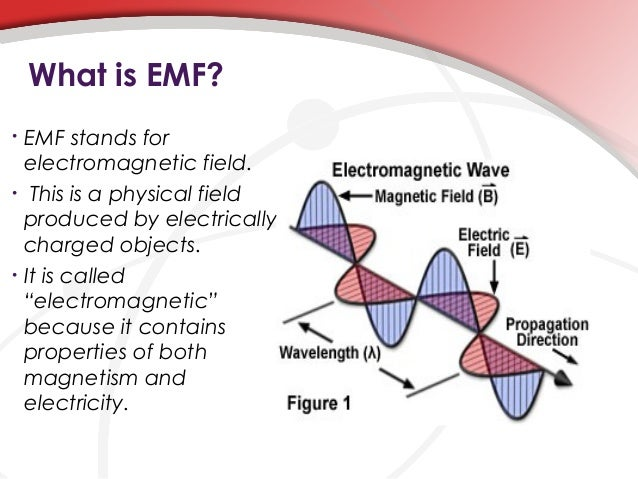 the true facts about emf