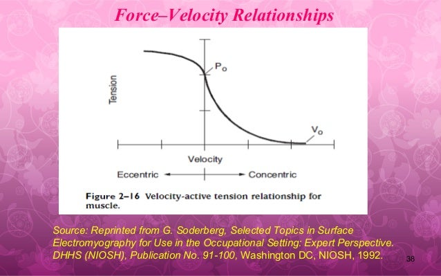 force velocity relationship isometric perspective