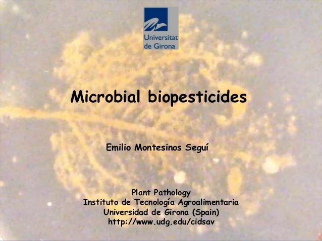 Microbial biopesticides Plant Pathology Instituto de Tecnología Agroalimentaria Universidad de Girona (Spain) http://www.u...