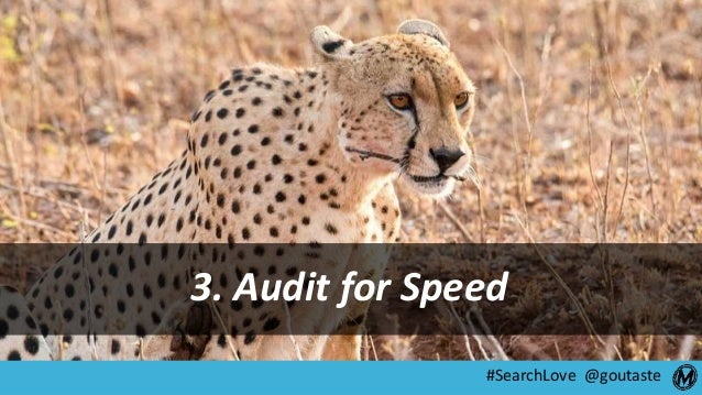 #SearchLove @goutaste 3. Audit for Speed