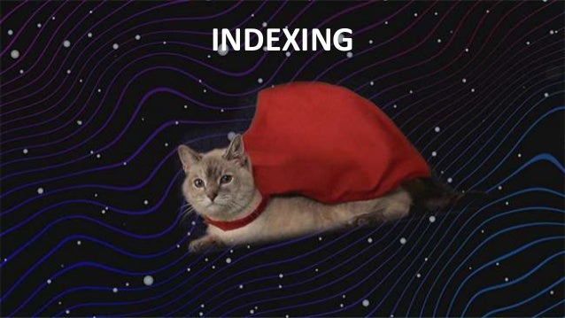 #SearchLove @goutaste INDEXING