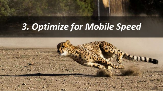 #SearchLove @goutaste 3. Optimize for Mobile Speed