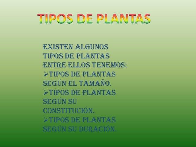 Existen algunostipos de plantasentre ellos tenemos:Tipos de plantassegún el tamaño.Tipos de plantassegún suconstitución....