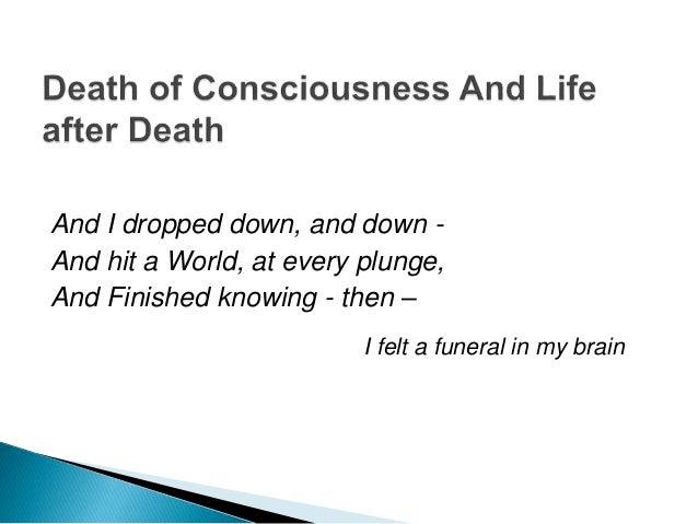 Essay/Term paper: I felt a funeral in my brain