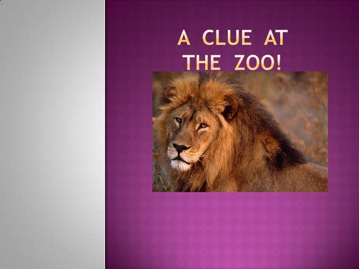 A  Clue  at  the  zoo!<br />