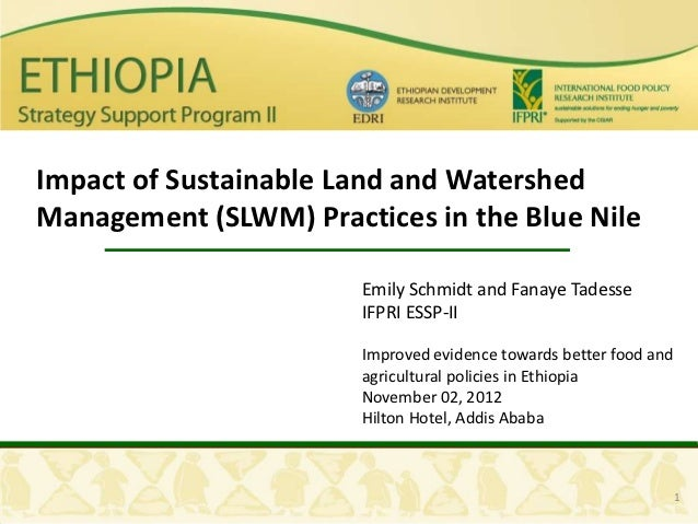 Impact of Sustainable Land and WatershedManagement (SLWM) Practices in the Blue Nile                       Emily Schmidt a...