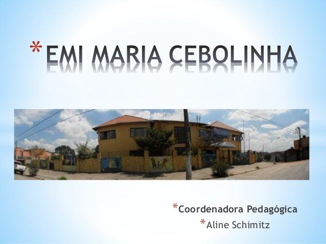 * *Coordenadora Pedagógica *Aline Schimitz