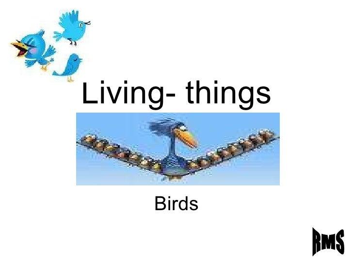 Living- things Birds RMS