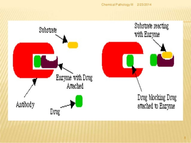 how to develop enzyme assay