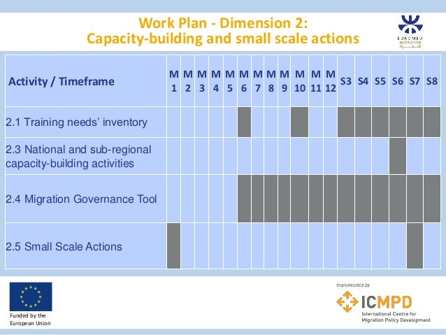 Work Plan - Dimension 2: Capacity-building and small scale actions Funded by the European Union Activity / Timeframe M 1 M...