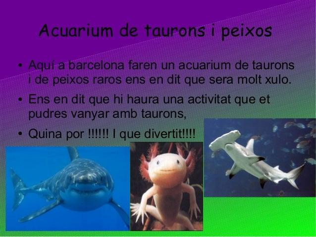 Acuarium de taurons i peixos● Aquí a barcelona faren un acuarium de tauronsi de peixos raros ens en dit que sera molt xulo...