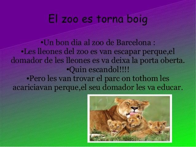El zoo es torna boig●Un bon dia al zoo de Barcelona :●Les lleones del zoo es van escapar perque,eldomador de les lleones e...