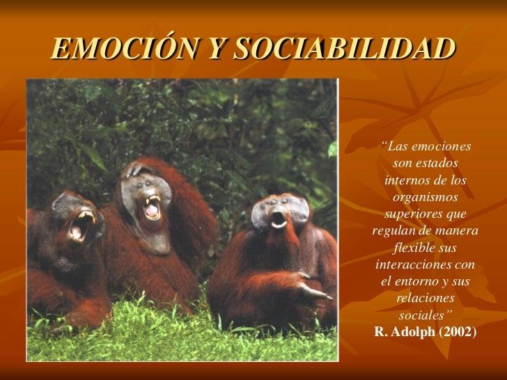 """EMOCIÓN Y SOCIABILIDAD                   """"Las emociones                      son estados                    internos de lo..."""