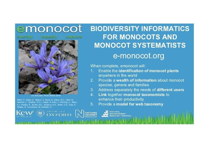 BIODIVERSITY INFORMATICS                                                                               FOR MONOCOTS AND   ...