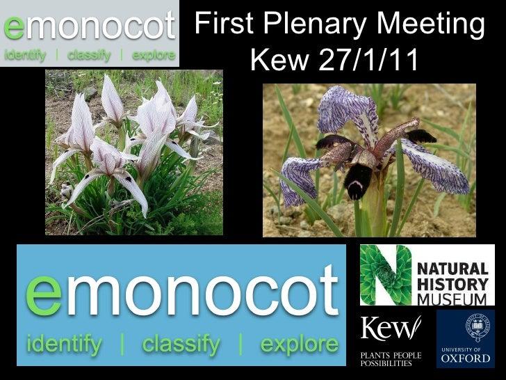 First Plenary Meeting Kew 27/1/11