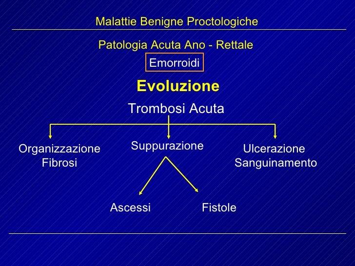 Malattie Benigne Proctologiche Emorroidi Patologia Acuta Ano - Rettale Evoluzione Trombosi Acuta Organizzazione Fibrosi Su...