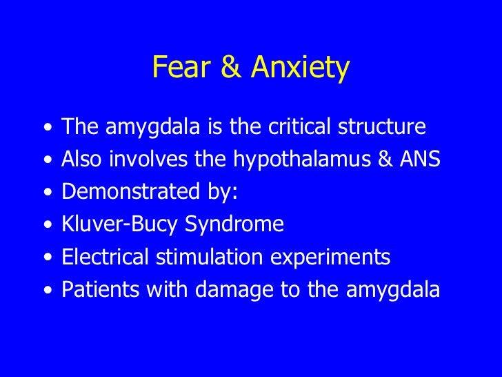 Fear & Anxiety <ul><li>The amygdala is the critical structure </li></ul><ul><li>Also involves the hypothalamus & ANS </li>...