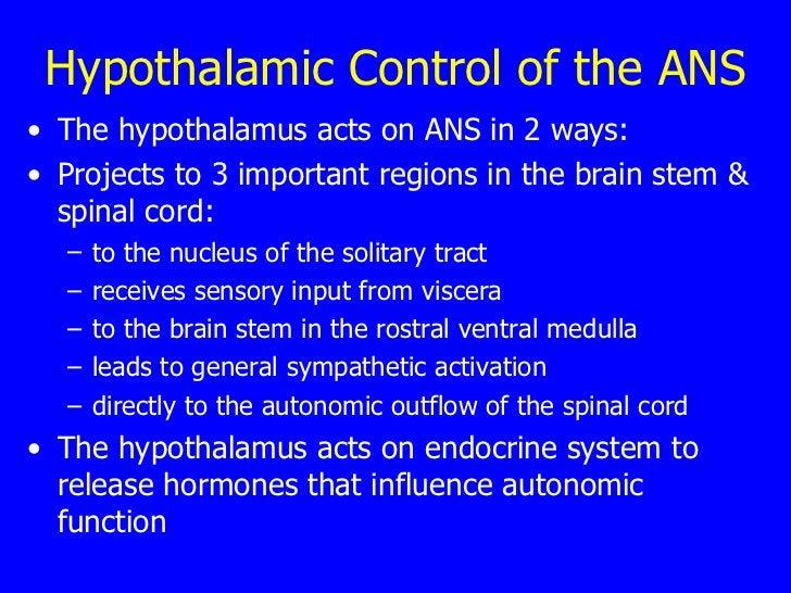 Hypothalamic Control of the ANS <ul><li>The hypothalamus acts on ANS in 2 ways: </li></ul><ul><li>Projects to 3 important ...
