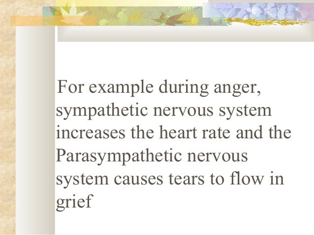 In both the Parasympathetic and sympathetic systems, there is relay station called a ganglion between the central nervou...