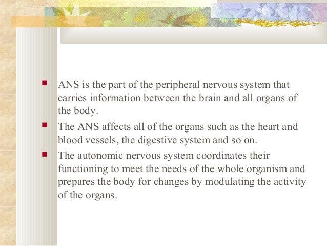  Autonomic Nervous System has two divisions;  Sympathetic Nervous System  Parasympathetic Nervous System